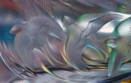 Dream Bird Rising